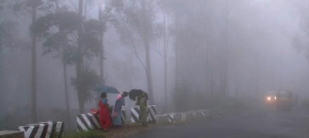 Mist-Group