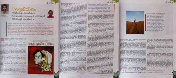 aadu-2Bjeevitham