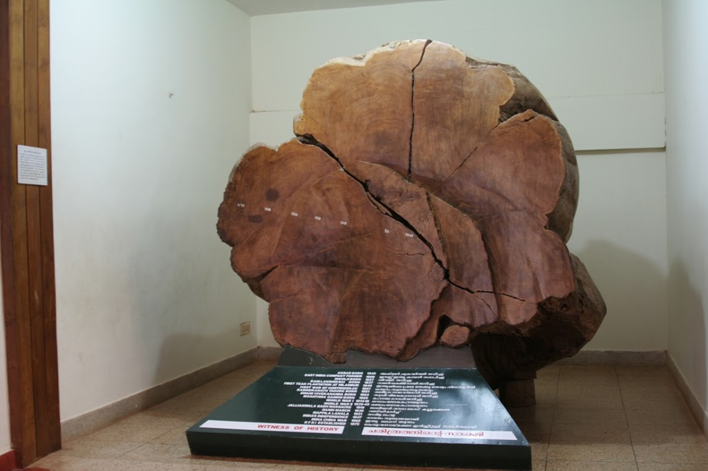 Teak-Museum-Nilambur-033